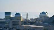 Rückenwind für die Renaissance der Kernkraft in Japan