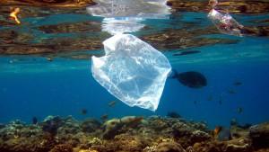 Ertrinkt das Mittelmeer in Plastik?