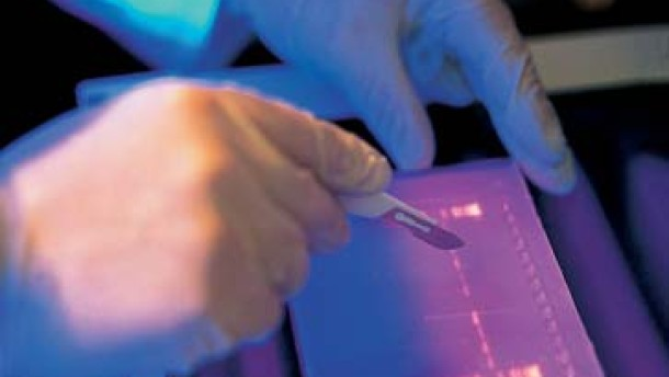 Teure Morphosys-Aktie profitiert von erheblich erhöhter Prognose