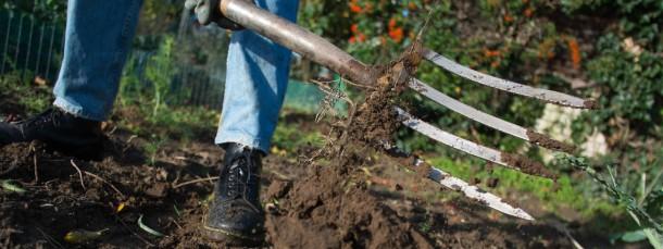Die Deutschen arbeiten gerne im Garten und lassen sich das auch etwas kosten.
