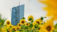 Ein grüner Anstrich für die EZB? Mit der Gründung eines Klimaschutz-Zentrums und der Beteiligung an einem neuen grünen Fonds soll das gelingen.