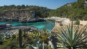 Und ewig lockt Mallorca