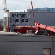 In finanziellen Schwierigkeiten: Der Brennstoff-Hersteller German Pellets aus Wismar.