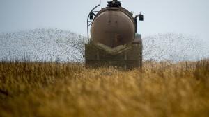 Die Bauern und das Nitrat