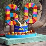 Den Geburtstag einer Elefantendame kann man nicht von der Steuer absetzen - andere aber unter bestimmten Voraussetzungen schon.