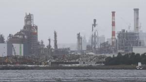 Auch die Bank von Japan wird grüner