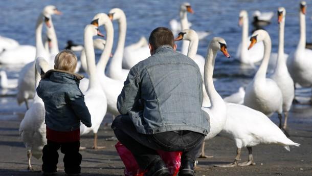 Hessische Väter verschmähen Elterngeld