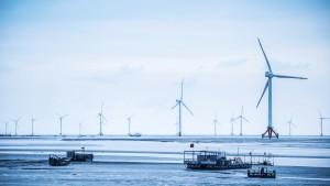 Windreich: Ein Windpark entscheidet über das Schicksal der Gläubiger