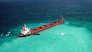 Kampf um das Great Barrier Riff