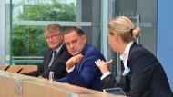 AfD in Ostdeutschland: Blau blüht das Kernland