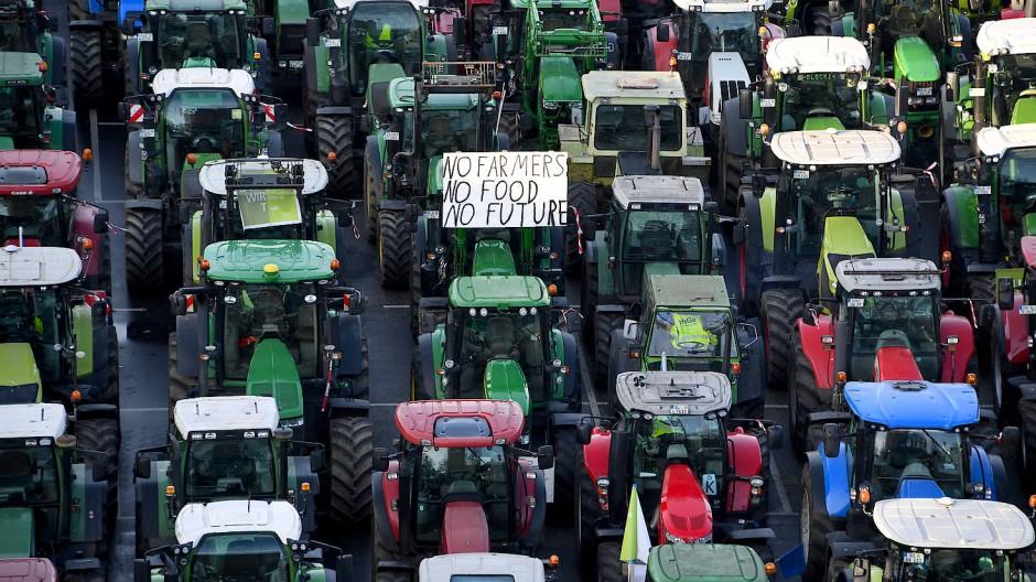 Traktoren stehen an diesem Freitag nach einer Sternfahrt auf den Exerzierplatz in Kiel
