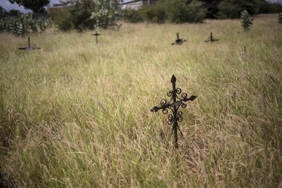 Kreuze markieren die überwucherten Gräber des Friedhofs Corazon de Jesus.
