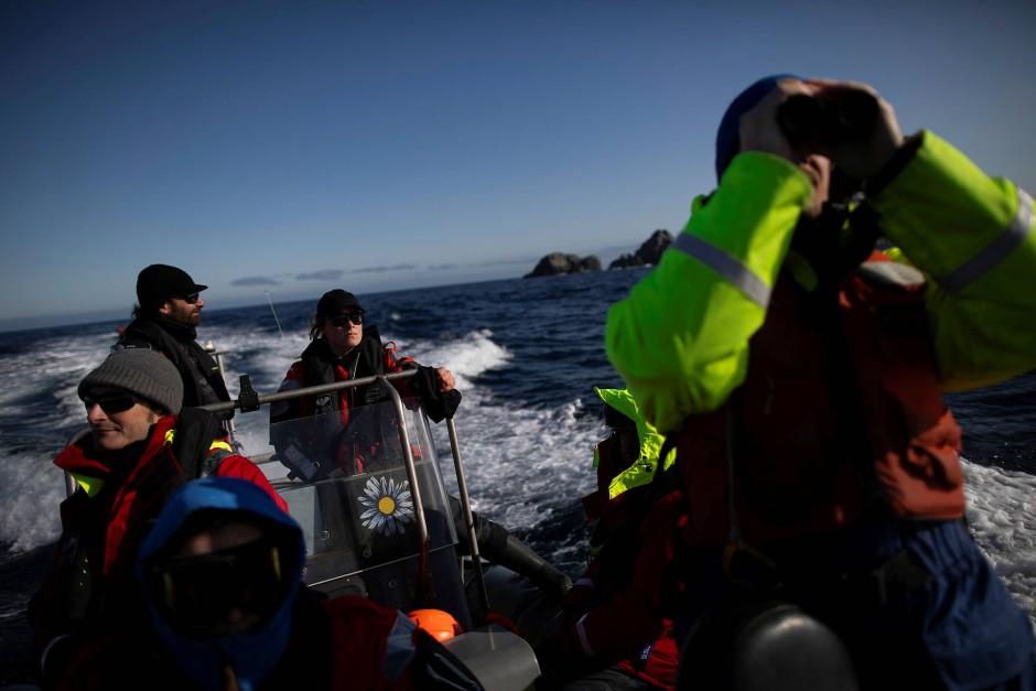 Usnea Granger von Greenpeace steuert die Wissenschaftler durch die Gewässer vor Anvers Island zu den Nistplätzen.