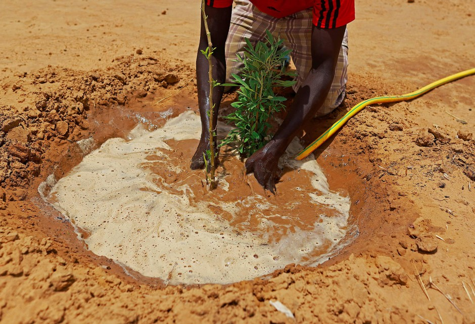 Die runden Gärten sollen zukünftig auch der Lebensmittelknappheit entgegenwirken.