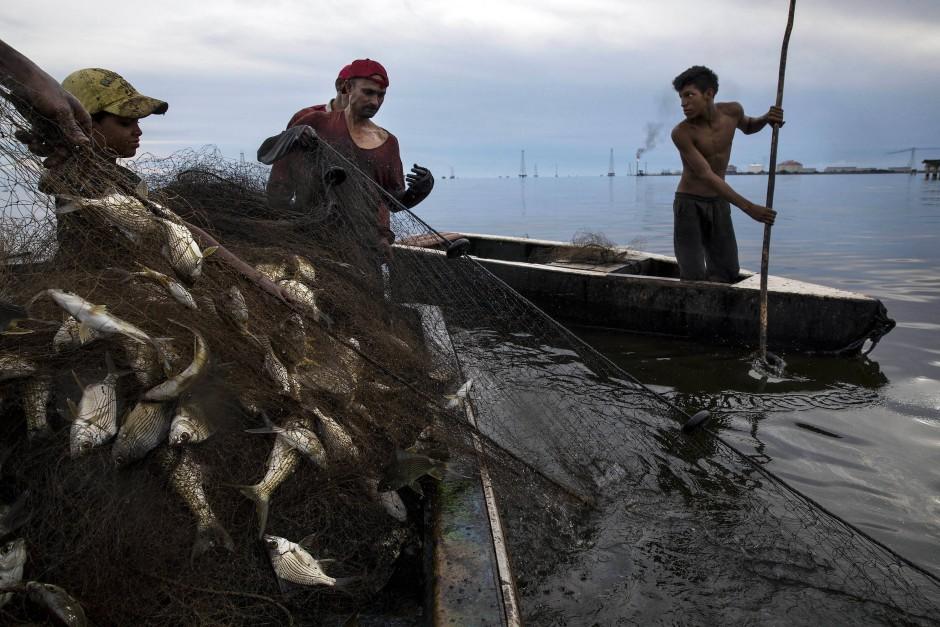 In ölverschmierten Netzen ziehen die Männer ihren Fang ins Boot.