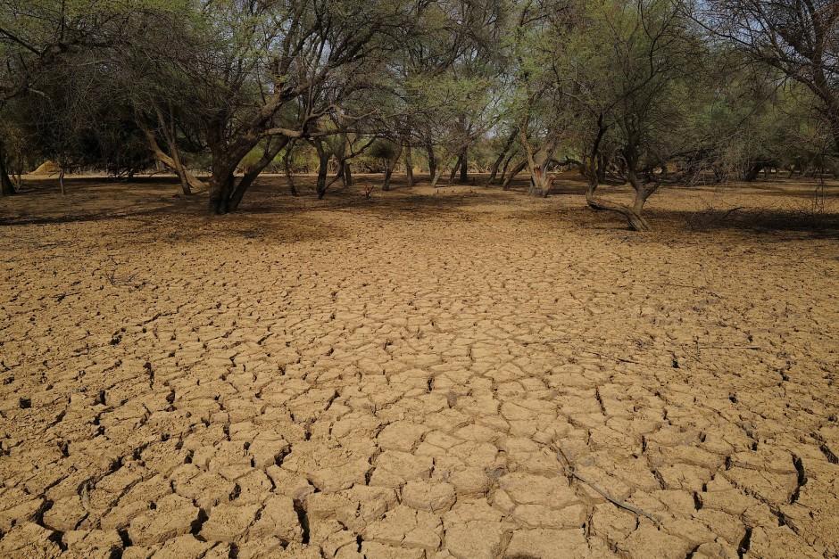 Trockenheit bleibt ein großes Problem in der Region.