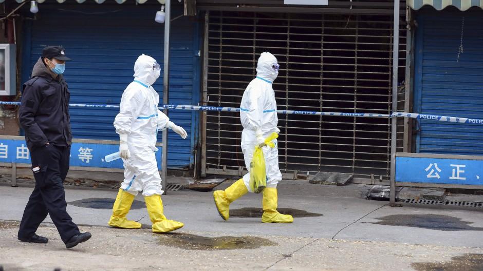 Arbeiter in Schutzkleidung tragen im Januar 2020 eine Tasche, in der sich ein Riesensalamander befindet, der vom Huanan-Markt entkommen sein soll.