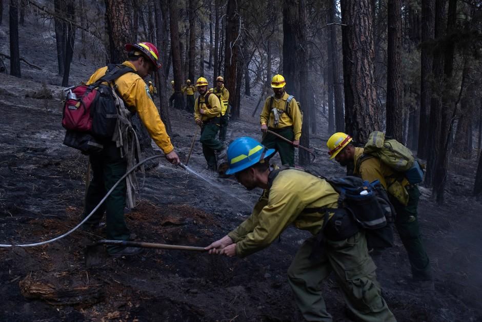 Häftlinge der Warner Creek Correctional Facility kämpfen gemeinsam mit Forstarbeitern gegen die Brandherde.