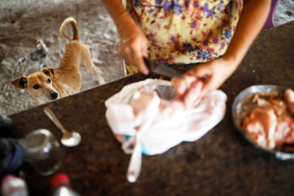 Maria da Luz bereitet unter wachsamen Augen ihres Hundes Hühnchen zu.