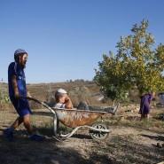 Jüdische Kinder spielen in Havat Gilad in dem durch Israel besetzten Westjordanland. Die Siedlung besteht aus über einen Bergrücken verstreuten Häusern, umgeben von palästinensischen Dörfern.