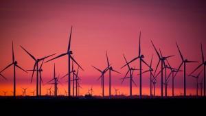 Wie die Parteien das Klima retten wollen