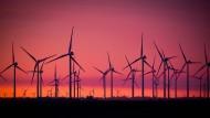 Wahlprogramme: Wie CDU, SPD und Grüne das Klima retten wollen