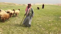 Wie Israels Siedler den Kampf um das Westjordanland gewinnen wollen