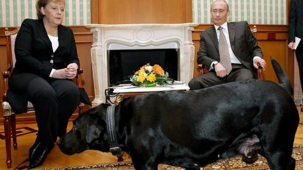 Warum Putin nun ein Problem hat