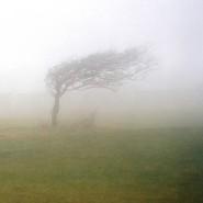 Transiente Globale Amnesie: Wenn das Gedächtnis plötzlich völlig vernebelt ist