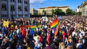 Ungarn verbietet die Darstellung von Homosexualität