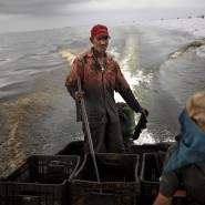 Jose Miguel Perez steuert seinen Außenborder durch die ölverseuchten Gewässer. Oft erstickt der Motor in der zähen Masse.