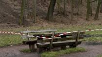 In einem Wald bei Darmstadt: Hier soll die Leiche der jungen Frau von ihren Verwandten abgelegt worden sein.
