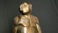 Forscher entdecken die Todesursache des Urmenschen