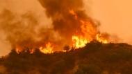 Waldbrände wüten im Westen Kanadas und in Kalifornien