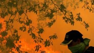 "Spanien bittet EU um Hilfe beim Kampf gegen ""Feuerterroristen"""