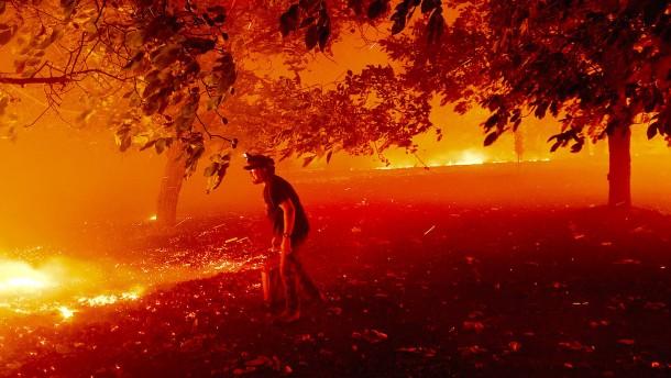 Kalifornien steht wieder in Flammen