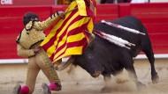 Verfassungsrichter heben Stierkampfverbot auf