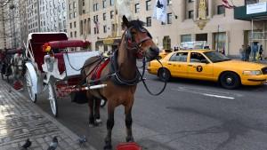 New York will weniger Pferdekutschen im Central Park