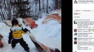 Norwegische Kinder besuchen Rentierschlachtung