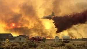 Erste Erfolge im Kampf gegen Buschbrände