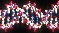 Verrät viel: die menschliche DNA.