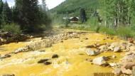 Umweltschützer vergiften versehentlich einen Fluss