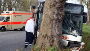 Schulbus frontal gegen Baum gefahren