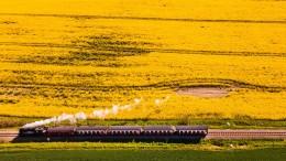 Dampflokbahn Molli kollidiert mit Wohnmobil