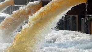 Quecksilber und Schwermetalle in der Elbe nachgewiesen