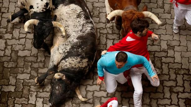 Fünf Stiere und fünf Verletzte