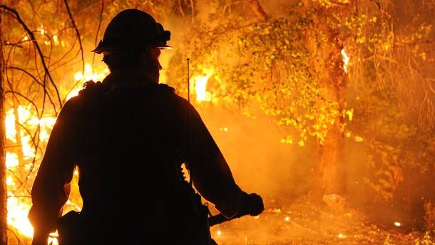 Das Feuer frisst sich zum Yosemite vor