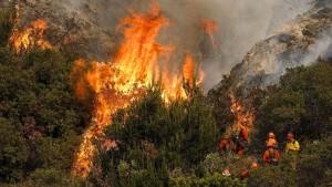 Feuerwehr dämmt Buschfeuer bei Los Angeles weiter ein