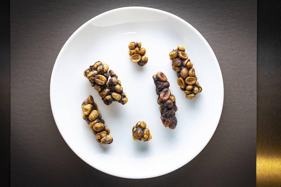 Exponat: Kopi Luwak aus Indonesien, von Schleichkatzen gefressene und wieder ausgeschiedenen Kaffeekirschen, die als Kaffeespezialität gehandelt werden.