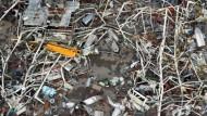 Wirbelstürme in Amerika: 55 Tote